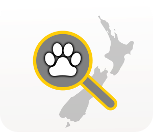 Search for Lost or Found pets