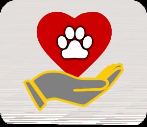 LPF Pet Network