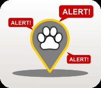 Lost Pet Alert